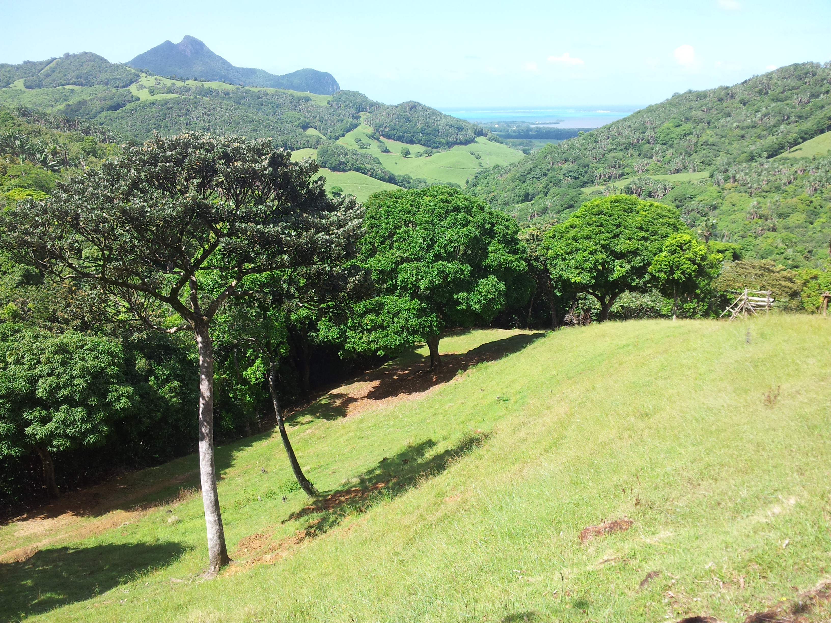 Ferney Valley Mauritius